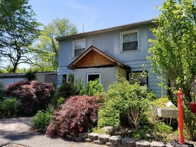 Wayne Twp. Single Family Home For Sale: 299 Boulevard Dr