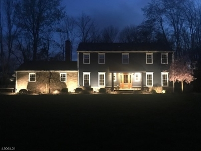 Bernards Twp. Single Family Home For Sale: 13 Victoria Dr