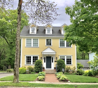Chatham Boro Single Family Home For Sale: 52 Hedges Ave