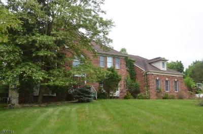 Clinton Twp. Single Family Home For Sale: 14 Oakridge Road