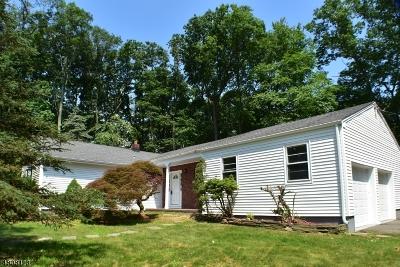 Randolph Twp. Single Family Home For Sale: 19 Foxwood Ln