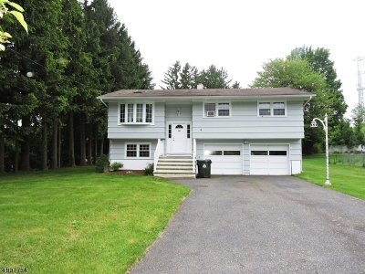 Mount Olive Twp. Single Family Home For Sale: 6 Harris Ln