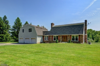 Kingwood Twp. Single Family Home For Sale: 44 Hampton Rd
