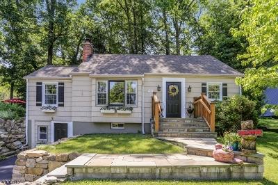 Sparta Twp. Single Family Home For Sale: 137 Hillside Rd