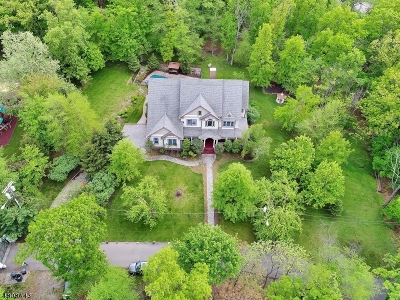 Woodland Park Single Family Home For Sale: 15 Birch Tree Lane