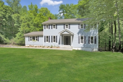 Chester Single Family Home For Sale: 32 Old Mill Rd