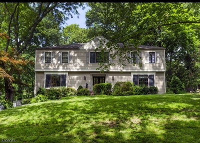 Morris Twp. Single Family Home For Sale: 33 Knollwood Dr
