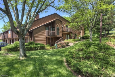 Clinton Twp. Condo/Townhouse For Sale: 72 Meadowview Dr