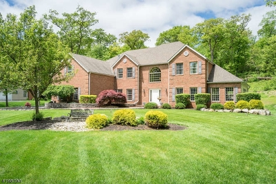 Sparta Twp. Single Family Home For Sale: 18 Angelo Dr