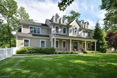 Westfield Town Single Family Home For Sale: 321 Brightwood Ave