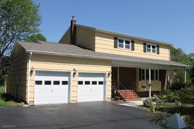 Roxbury Twp. Single Family Home For Sale: 61 Unneberg Ave