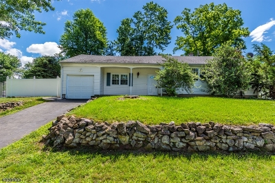 Piscataway Twp. Single Family Home For Sale: 9 Dupont Ave