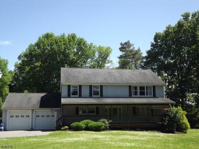 Glen Gardner Boro, Hampton Boro Single Family Home For Sale: 12 Smith St