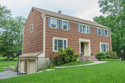 Chester Boro Single Family Home For Sale: 20 Larch Dr
