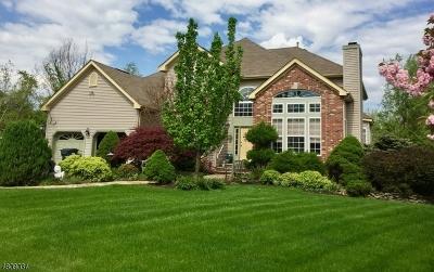 Branchburg Twp. Single Family Home For Sale: 37 Oak Tavern Cir