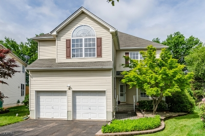 Hillsborough Twp. Single Family Home Active Under Contract: 12 Prall Rd