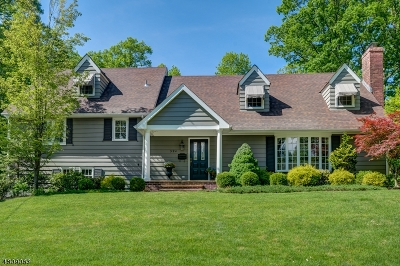 Westfield Town Single Family Home For Sale: 994 Woodmere Dr