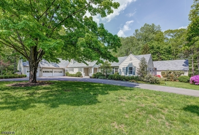 Harding Twp. Single Family Home For Sale: 27 Long Hill Rd
