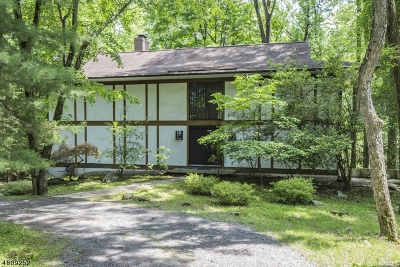 Montgomery Twp. Single Family Home For Sale: 163 Rolling Hill Rd