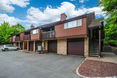 Clinton Town, Clinton Twp. Condo/Townhouse For Sale: 39 Summit Ct
