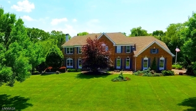 Branchburg Twp. Single Family Home For Sale: 10 Christie Way