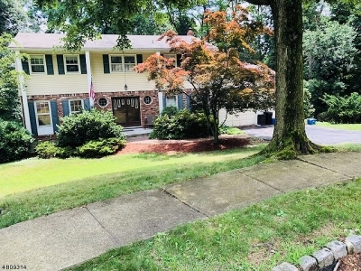 Parsippany-Troy Hills Twp. Single Family Home For Sale: 11 Tallwood Ct