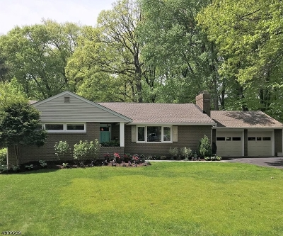 New Providence Single Family Home For Sale: 179 Maple St