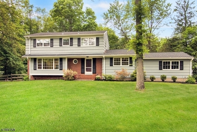 Bernards Twp. Single Family Home For Sale: 2 Wedgewood Dr