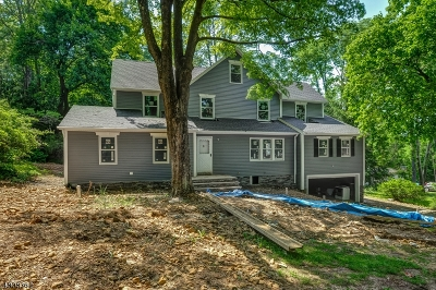 Berkeley Heights Single Family Home For Sale: 19 Inwood Rd