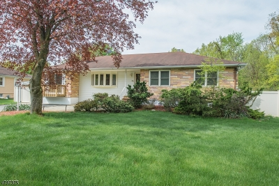 Parsippany Single Family Home For Sale: 32 Sagamore Rd