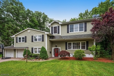 Cranford Twp. Single Family Home For Sale: 23 Princeton Rd