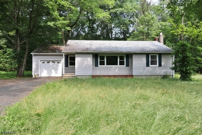 Sussex County Single Family Home For Sale: 289 Fairview Ave