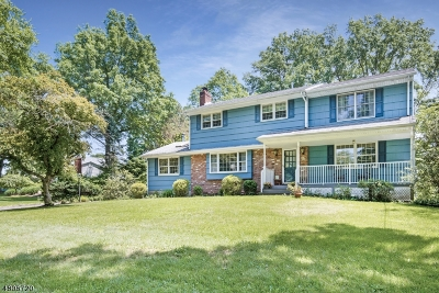Bridgewater Twp. Single Family Home For Sale: 486 Winding Brook Way