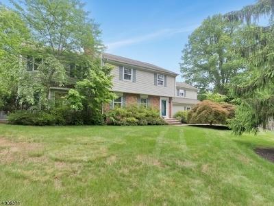 Bernards Twp. Single Family Home For Sale: 60 Goltra Dr