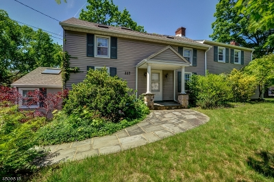 Morris Twp. Single Family Home For Sale: 117 Park Ave