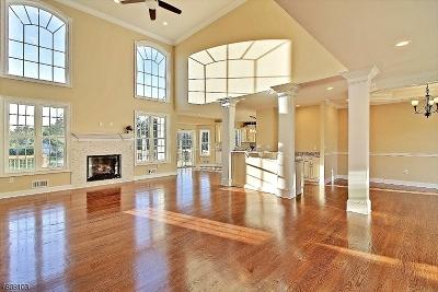 Hillsborough Twp. Single Family Home For Sale: 255 Sunnymeade Rd