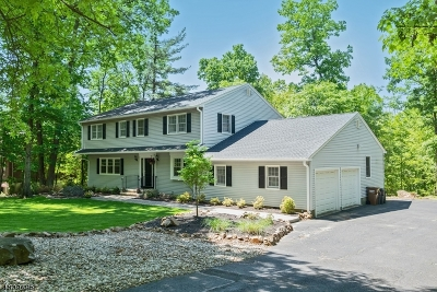 Bridgewater Twp. Single Family Home For Sale: 815 Starview Way