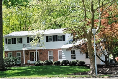 Parsippany-Troy Hills Twp. Single Family Home For Sale: 5 Pondview Rd