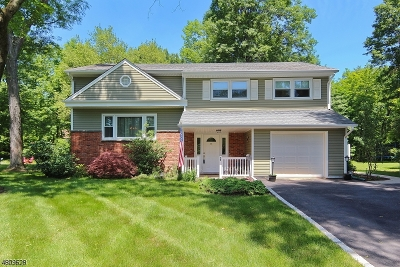 New Providence Single Family Home For Sale: 70 Whitman Dr