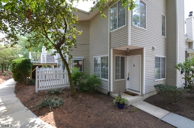 Bedminster Twp. Condo/Townhouse For Sale: 61 Morgan Ct