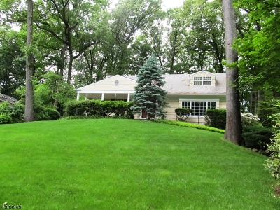Single Family Home For Sale: 39 Woodland Ave