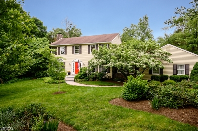 Montgomery Twp. Single Family Home For Sale: 12 Nassau Ct