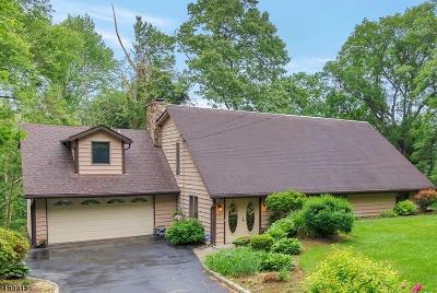 Montville Twp. Single Family Home For Sale: 52 Hillcrest Ave