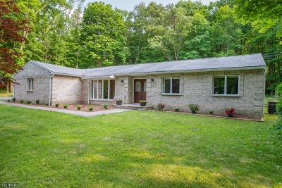 Sparta Twp. Single Family Home For Sale: 702 W Mountain Rd