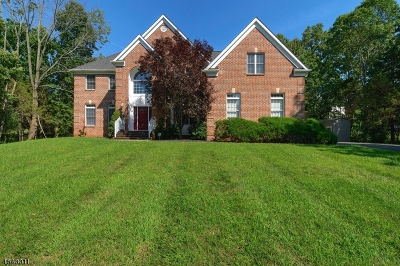 Bridgewater Twp. Single Family Home For Sale: 556 Meadow Rd