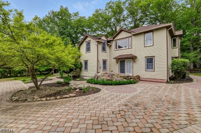 Tewksbury Twp. Single Family Home For Sale: 27 W Fairmount Rd