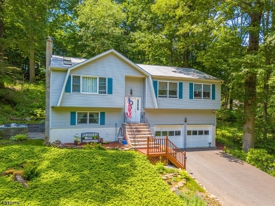 Parsippany-Troy Hills Twp. Single Family Home For Sale: 40 Carriage House Rd