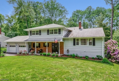 Berkeley Heights Single Family Home For Sale: 97 Cedar Green Ln