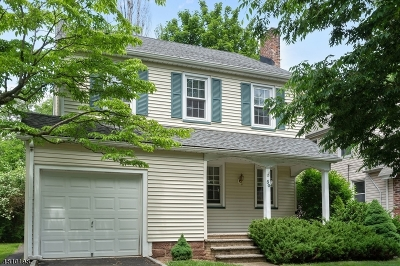 Bloomfield Twp. Single Family Home For Sale: 30 Darling Ave