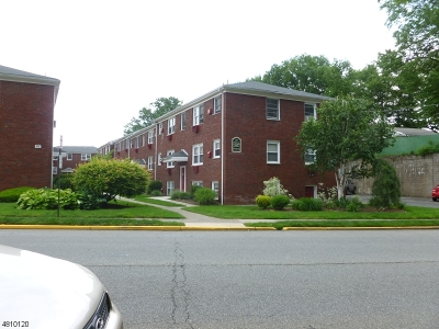 Belleville Twp. Condo/Townhouse For Sale: 476 Joralemon St U-C6 #C-6